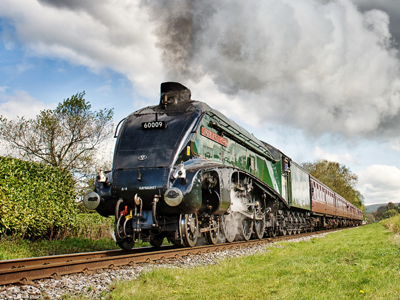 Autumn Steam Gala